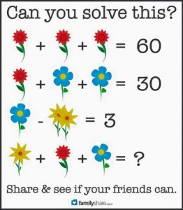 flower_problem