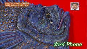 katagiri-nendo (3)